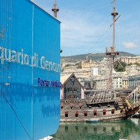 Ligurien: Aquarium in Genua