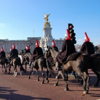London: Buckingham Palace, Horse Parade
