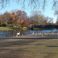 London: Regent´s Park