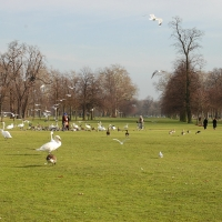 London: Hyde Park
