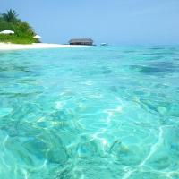 Malediven: Mirihi Island Resort