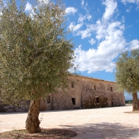 Mallorca: Finca de Son Real