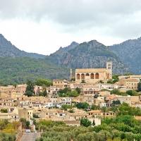 Mallorca: Selva