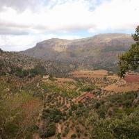 Mallorca: Hinterland