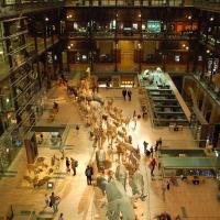 Paris: Muséum National d'histoire Naturelle