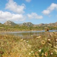 Sardinien: Oasi Bidderosa