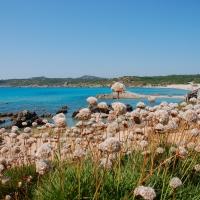 Sardinien: Spiaggia di Rena Maiore bei Santa Teresa di Gallura